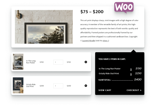 WooCommerce integration with Timber to create an online store with ease