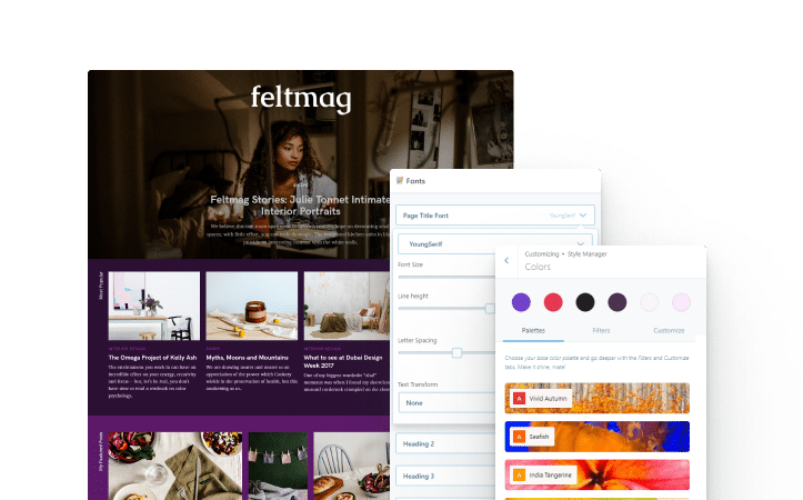 edit this magazine wordpress theme's colors and fonts with style manager